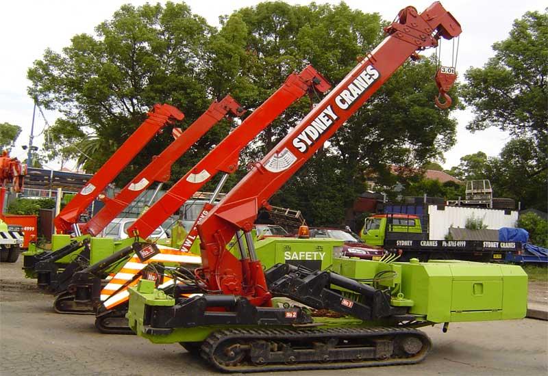 Mini Crawler Cranes